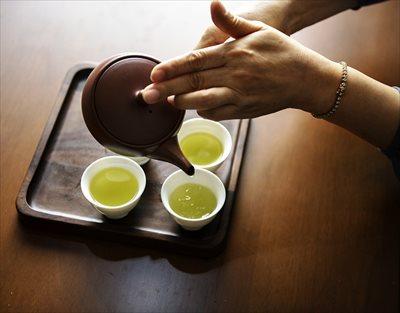 狭山茶をお求めなら【味の狭山茶 まとば園】へ~贈り物にもおすすめ!おいしい・こだわりの狭山茶をお届け~